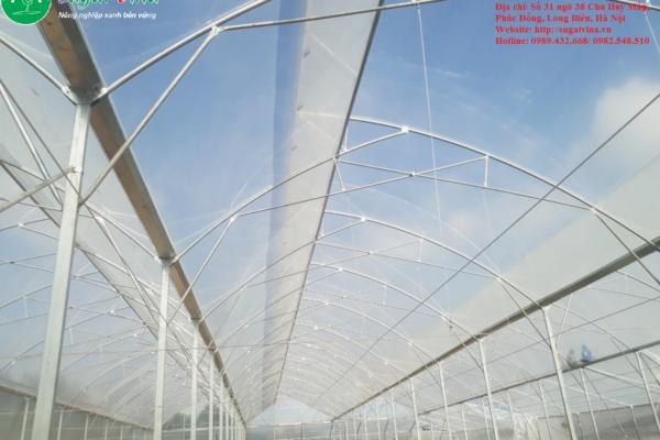 Chuyên thiết kế, thi công nhà kính nông nghiệp công nghệ cao